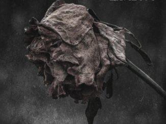 Lavidius - Days Get Darker