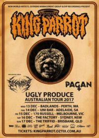 tour2017-kingparrot