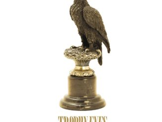Trophy Eyes - Hurt