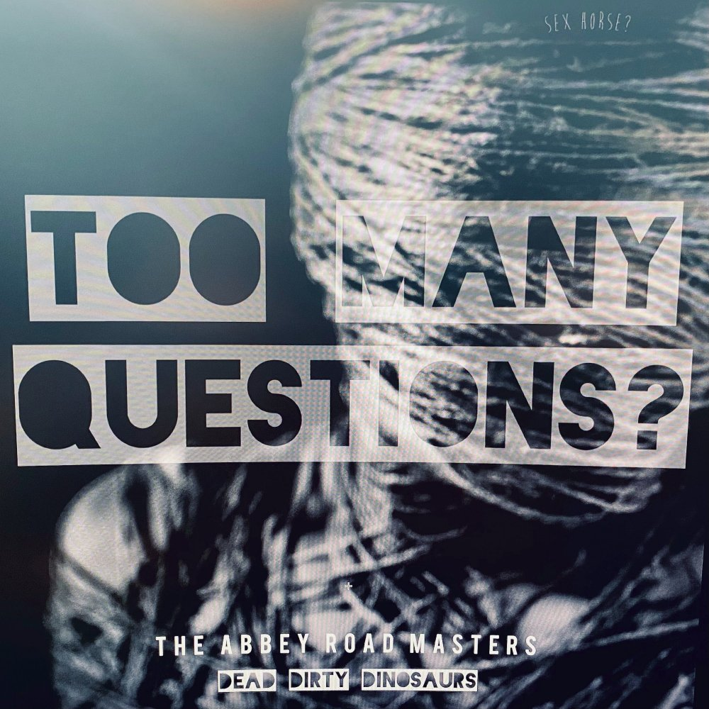 Dead Dirty Dinosaurs - Too Many Questions